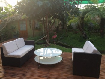 serre tropicale location tournage cin ma avec cast 39 things. Black Bedroom Furniture Sets. Home Design Ideas