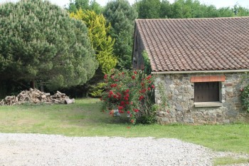 location villa 180 m² avec piscine, Photo 3